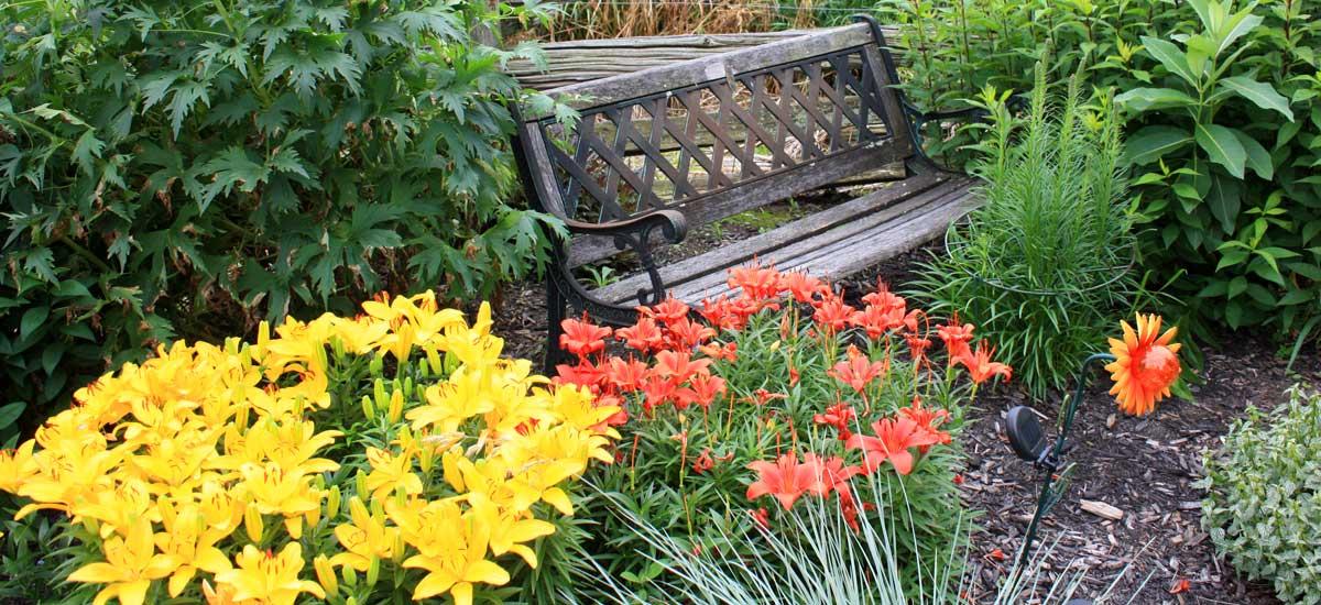 A Quiet Sanctuary to Relax and Rejuvenate
